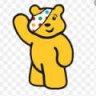 Pudsey Bear